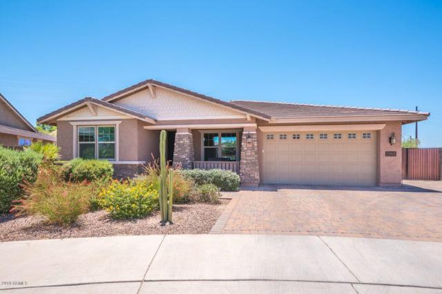 22031 E Estrella Road, Queen Creek, AZ 85142 (MLS #5948886) :: Revelation Real Estate