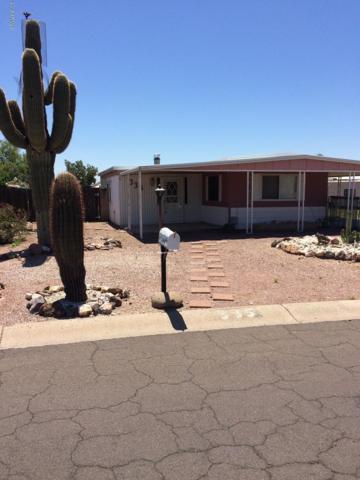 335 E Wagoner Road, Phoenix, AZ 85022 (MLS #5948908) :: The W Group