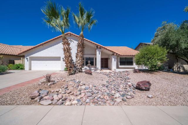 9210 S Heather Drive, Tempe, AZ 85284 (MLS #5948916) :: Homehelper Consultants