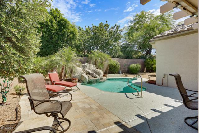 16294 W Cactus Valley Lane, Surprise, AZ 85374 (MLS #5948941) :: Brett Tanner Home Selling Team
