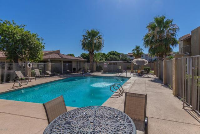 1111 E University Drive #121, Tempe, AZ 85281 (MLS #5948951) :: Team Wilson Real Estate
