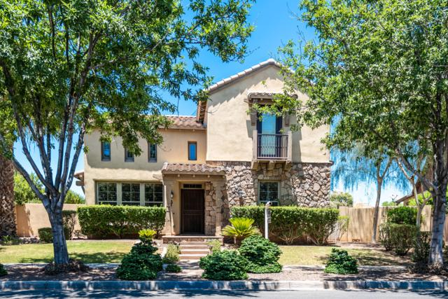 15318 W Surrey Drive, Surprise, AZ 85379 (MLS #5949037) :: Kortright Group - West USA Realty