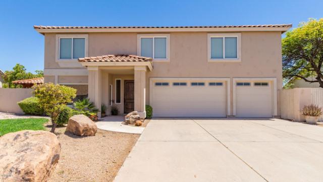 2863 E Mallory Street, Mesa, AZ 85213 (MLS #5949049) :: Riddle Realty