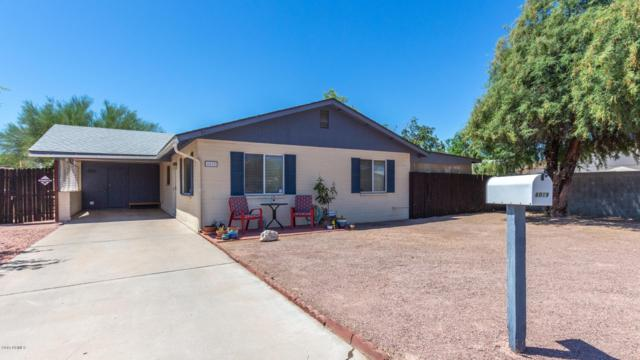 6019 W Dailey Street, Glendale, AZ 85306 (MLS #5949060) :: CC & Co. Real Estate Team