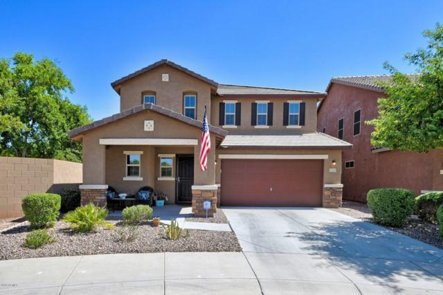 11903 W Honeysuckle Court, Peoria, AZ 85383 (MLS #5949123) :: Occasio Realty