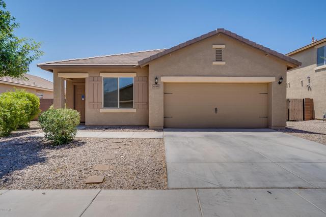 42497 W Sussex Road, Maricopa, AZ 85138 (MLS #5949130) :: Revelation Real Estate