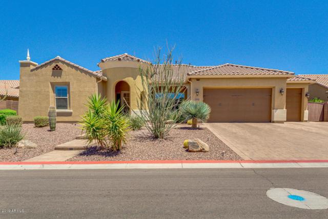 3914 E Enrose Street, Mesa, AZ 85205 (MLS #5949181) :: CC & Co. Real Estate Team