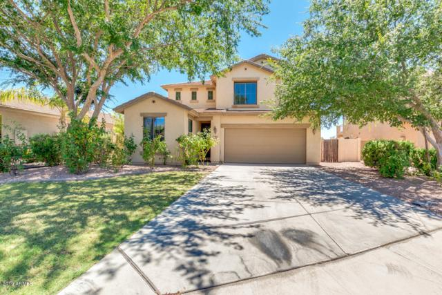 6584 S Cartier Drive, Gilbert, AZ 85298 (MLS #5949182) :: Openshaw Real Estate Group in partnership with The Jesse Herfel Real Estate Group