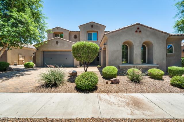 3121 E Blue Sage Court, Gilbert, AZ 85297 (MLS #5949237) :: Revelation Real Estate