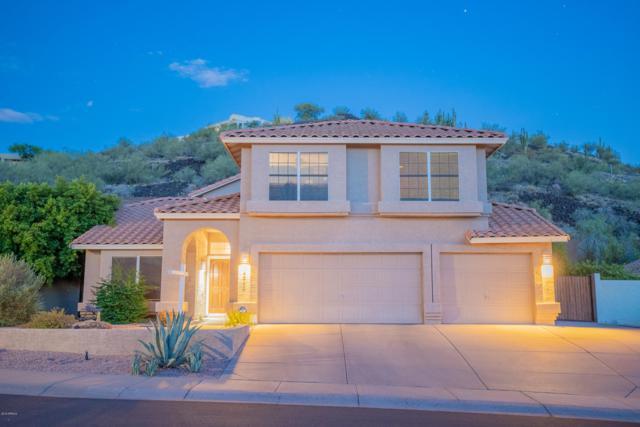 14243 N 16TH Avenue, Phoenix, AZ 85023 (MLS #5949271) :: Revelation Real Estate
