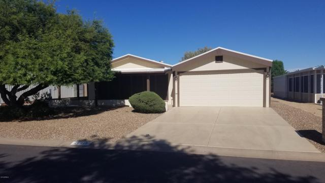 26415 S Maricopa Place, Sun Lakes, AZ 85248 (MLS #5949277) :: Revelation Real Estate