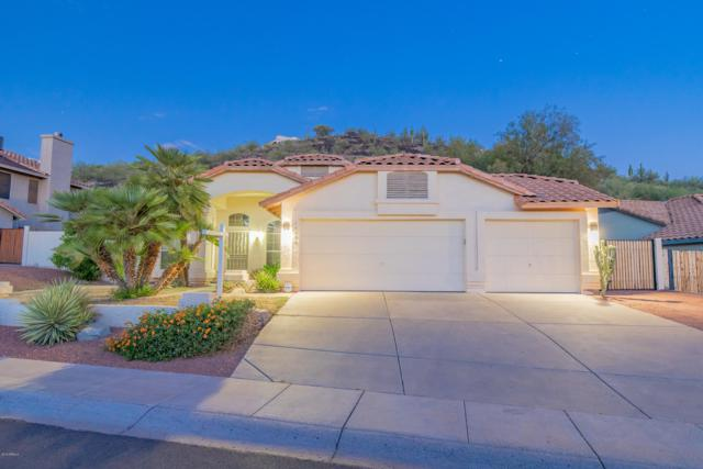 14239 N 16th Avenue, Phoenix, AZ 85023 (MLS #5949286) :: Revelation Real Estate