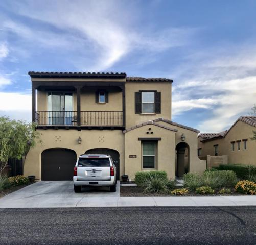 13679 W Creosote Drive, Peoria, AZ 85383 (MLS #5949329) :: Occasio Realty