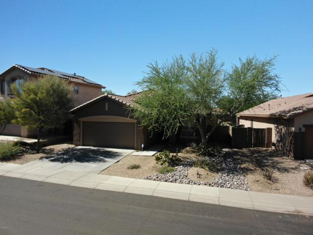 1703 W Kuralt Drive, Anthem, AZ 85086 (MLS #5949340) :: Team Wilson Real Estate