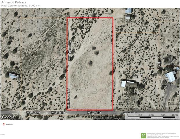 00 W Sotol Road, Maricopa, AZ 85139 (MLS #5949363) :: Brett Tanner Home Selling Team