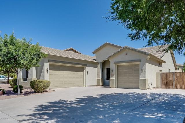 3078 E Goldfinch Way, Chandler, AZ 85286 (MLS #5949410) :: Revelation Real Estate