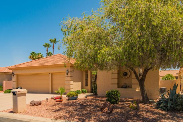 10825 E Silvertree Drive, Sun Lakes, AZ 85248 (MLS #5949413) :: Revelation Real Estate