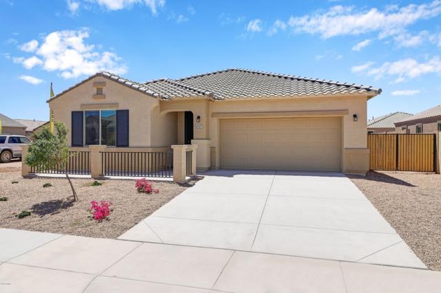 41347 W Curtis Lane, Maricopa, AZ 85138 (MLS #5949415) :: CC & Co. Real Estate Team