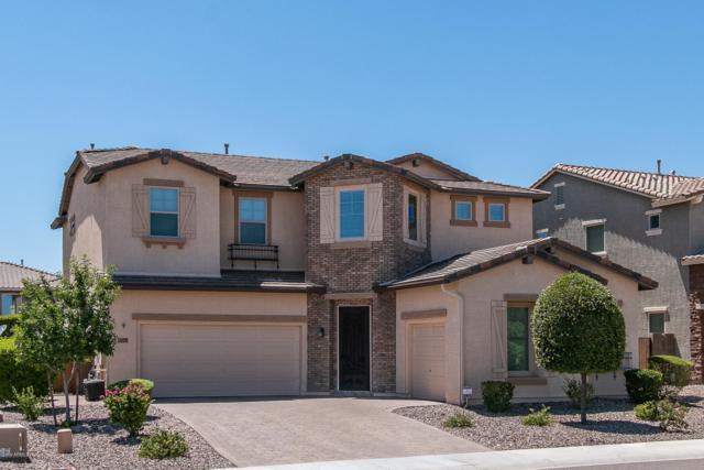 31320 N 137TH Glen, Peoria, AZ 85383 (MLS #5949471) :: CC & Co. Real Estate Team