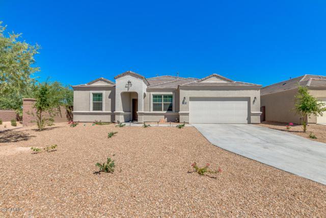 30272 W Fairmount Avenue, Buckeye, AZ 85396 (MLS #5949524) :: The Property Partners at eXp Realty