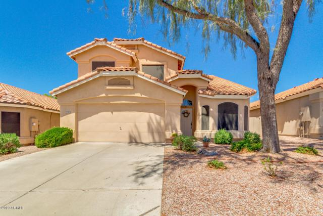 6530 E Raftriver Street, Mesa, AZ 85215 (MLS #5949527) :: Openshaw Real Estate Group in partnership with The Jesse Herfel Real Estate Group