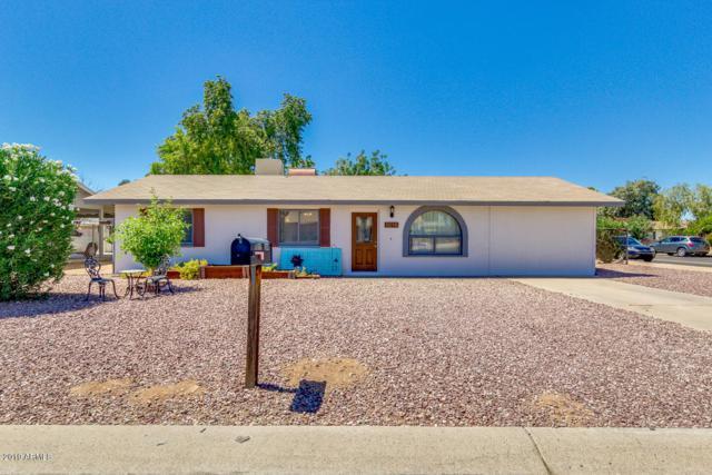 8015 E Jan Avenue, Mesa, AZ 85209 (MLS #5949542) :: Revelation Real Estate
