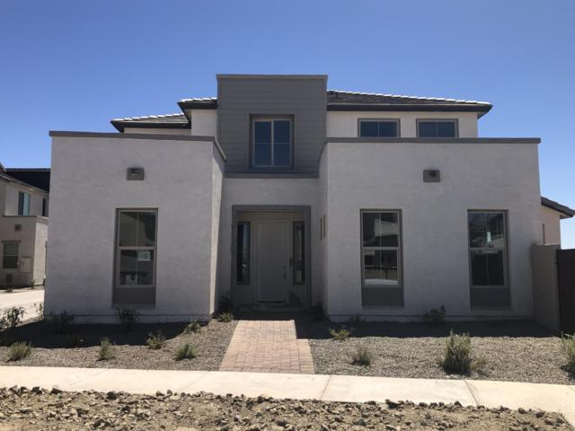 4902 S Tune, Mesa, AZ 85212 (MLS #5949551) :: Yost Realty Group at RE/MAX Casa Grande