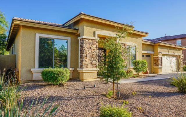 7823 W Peck Drive, Glendale, AZ 85303 (MLS #5949563) :: CC & Co. Real Estate Team