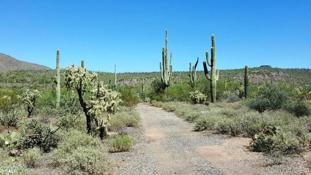 0 N 1st Street, New River, AZ 85087 (MLS #5949566) :: Team Wilson Real Estate