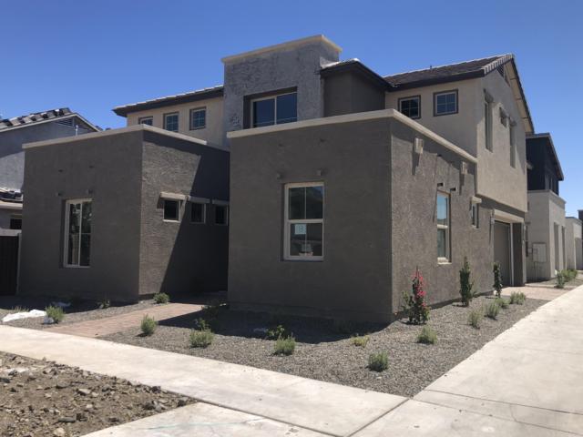 4912 S Tune, Mesa, AZ 85212 (MLS #5949577) :: Yost Realty Group at RE/MAX Casa Grande