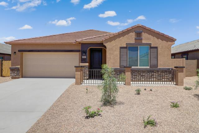 41364 W Curtis Lane, Maricopa, AZ 85138 (MLS #5949586) :: CC & Co. Real Estate Team