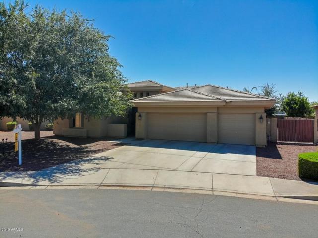 5600 S White Drive, Chandler, AZ 85249 (MLS #5949598) :: The Daniel Montez Real Estate Group