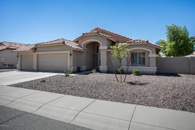 7889 W Piute Avenue, Glendale, AZ 85308 (MLS #5949604) :: The Ford Team