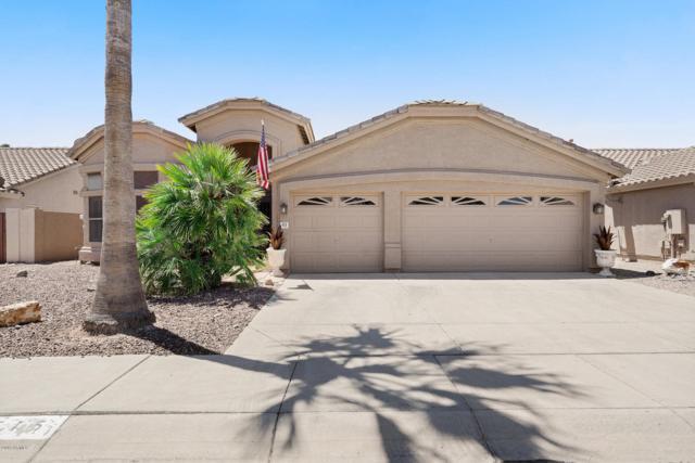515 W Villa Rita Drive, Phoenix, AZ 85023 (MLS #5949619) :: CC & Co. Real Estate Team