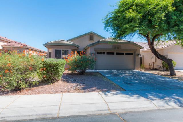 10859 W Windsor Avenue, Avondale, AZ 85392 (MLS #5949632) :: CC & Co. Real Estate Team