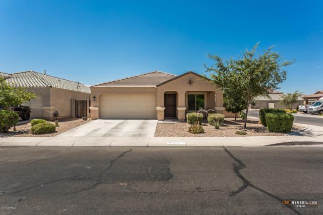 40173 W Novak Lane, Maricopa, AZ 85138 (MLS #5949662) :: Revelation Real Estate