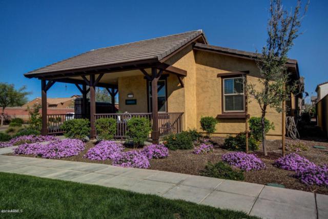 15384 W Columbine Drive, Surprise, AZ 85379 (MLS #5949702) :: Brett Tanner Home Selling Team