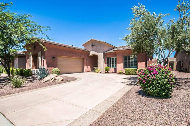 1910 E Desert Lane, Phoenix, AZ 85042 (MLS #5949773) :: Revelation Real Estate