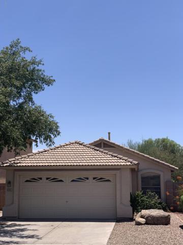 4709 E Tanglewood Drive, Phoenix, AZ 85048 (MLS #5949928) :: Yost Realty Group at RE/MAX Casa Grande