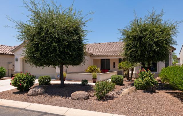 2572 N 165TH Drive, Goodyear, AZ 85395 (MLS #5949942) :: CC & Co. Real Estate Team