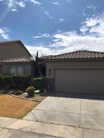 3906 S 100TH Lane, Tolleson, AZ 85353 (MLS #5949960) :: Team Wilson Real Estate