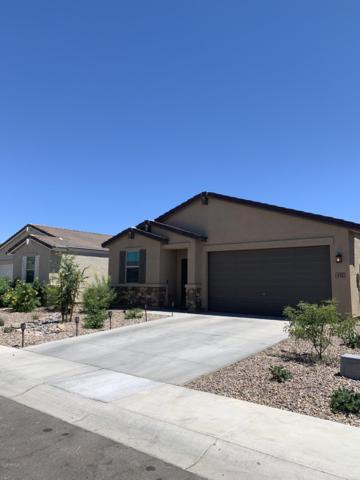 492 W Tenia Trail, San Tan Valley, AZ 85140 (MLS #5949987) :: Riddle Realty Group - Keller Williams Arizona Realty