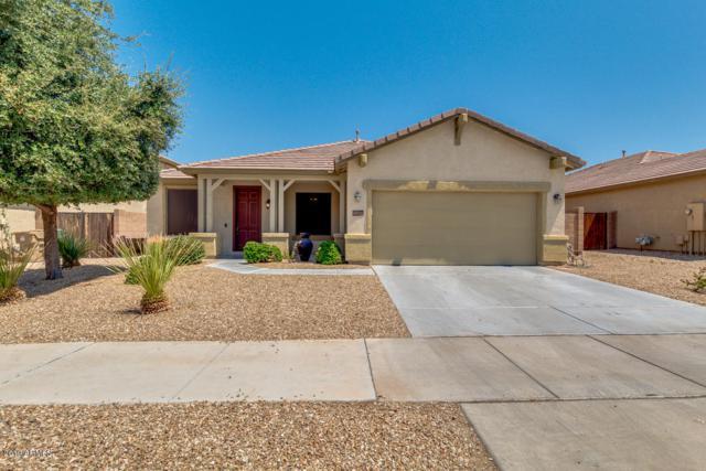 16528 W Sherman Street, Goodyear, AZ 85338 (MLS #5950002) :: CC & Co. Real Estate Team