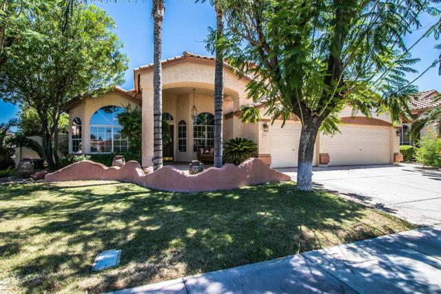 1563 W Browning Way, Chandler, AZ 85286 (MLS #5950032) :: Power Realty Group Model Home Center