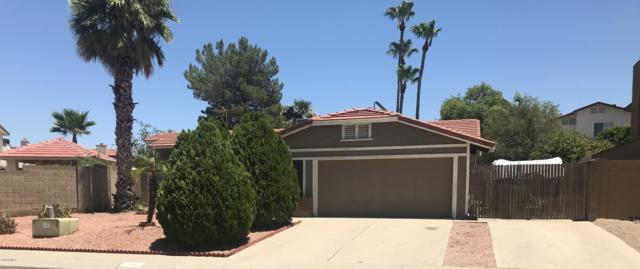 14401 N 20th Way, Phoenix, AZ 85022 (MLS #5950141) :: The Laughton Team