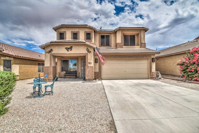 10890 E Wallflower Lane, Florence, AZ 85132 (MLS #5950163) :: Revelation Real Estate