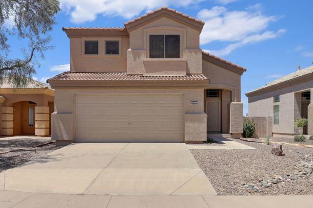 28420 N 51ST Street, Cave Creek, AZ 85331 (MLS #5950183) :: CC & Co. Real Estate Team