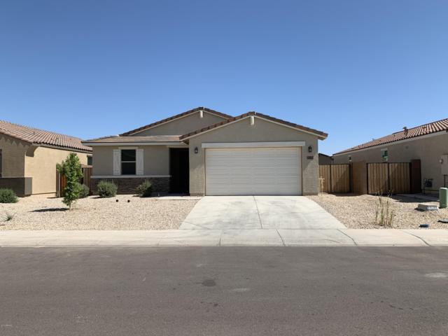 40042 W Curtis Way, Maricopa, AZ 85138 (MLS #5950210) :: Revelation Real Estate