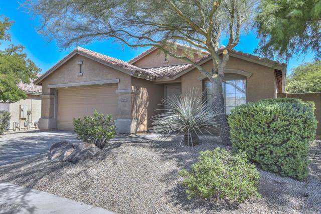 41084 N Wild West Trail, Anthem, AZ 85086 (MLS #5950218) :: Team Wilson Real Estate