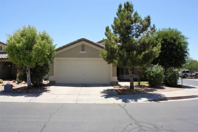 30588 N Coral Bean Drive, San Tan Valley, AZ 85143 (MLS #5950223) :: Revelation Real Estate
